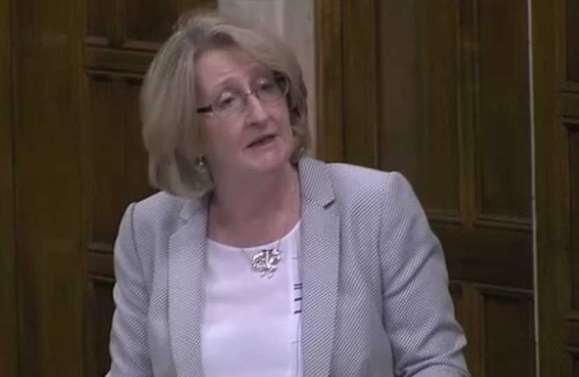 Mary speaking in the HS2 in the North West of England Debate