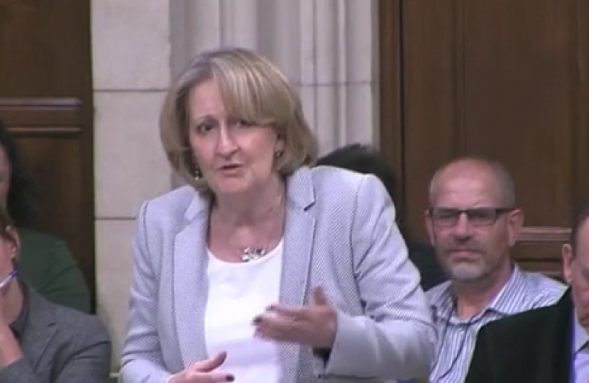 Mary speaking in the Cycling: Government Investment Debate