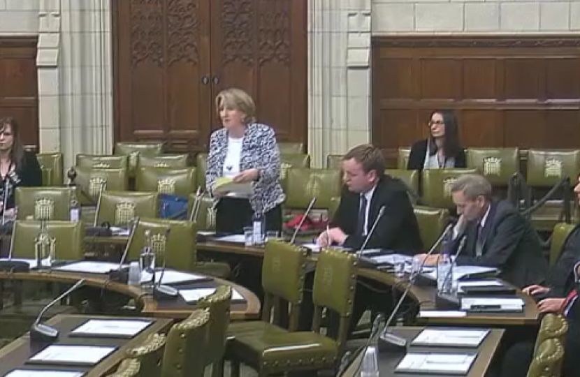 Mary speaking in the Greater Manchester Spatial Framework Debate